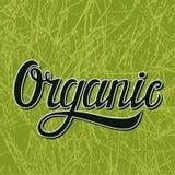 Ilustração orgânica da tipografia no verde Ilustração do Vetor