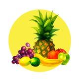 A ilustração orgânica fresca tirada mão dos frutos da aquarela ajustou-se no fundo branco Foto de Stock