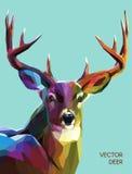 Ilustração poligonal dos cervos Vetor EPS 10 ilustração do vetor