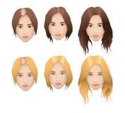 Ilustração realística da queda de cabelo da mulher Fotografia de Stock Royalty Free