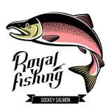 Ilustração Salmon do vetor dos peixes de Sockey Foto de Stock Royalty Free