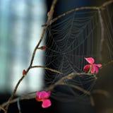 Ilustração selvagem da orquídea 3d ilustração royalty free