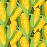 Ilustração sem emenda do vetor do teste padrão do milho Orelha ou espiga do milho Fotografia de Stock Royalty Free