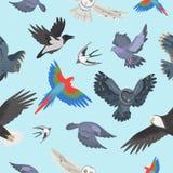 Ilustração sem emenda selvagem do vetor do fundo do teste padrão dos pássaros de voo da asa diferente ilustração royalty free