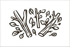 Ilustração simples tirada mão do esboço do ramo do vetor no fundo branco ilustração stock