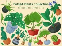 Ilustração super do vetor do cartaz da venda da floricultura interna das flores da casa Jardinagem da decoração da casa da nature ilustração royalty free