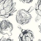 Ilustração tirada mão da alcachofra do vetor Coleção do alimento Fotos de Stock