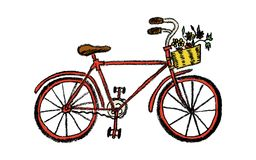 Ilustração tirada mão da bicicleta da cor ilustração stock