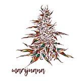 Ilustração tirada mão da marijuana ilustração royalty free