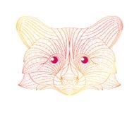 Ilustração tirada mão do guaxinim do esboço da garatuja Decorativo no projeto asteca tribal étnico do totem indiano africano Imagem de Stock