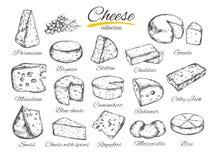 A ilustração tirada mão do vetor da coleção do queijo do queijo datilografa Fotografia de Stock Royalty Free
