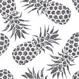 Ilustração tirada mão do vintage do abacaxi Fruta fresca do verão foto de stock royalty free