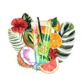 Ilustração tropical da aquarela com cocktail, frutos e flores do verão ilustração stock