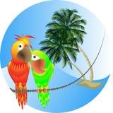 ilustração uma paisagem do mar com palmeiras e p Imagens de Stock Royalty Free