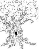 Ilustração velha do carvalho para gráficos dos contos Foto de Stock Royalty Free