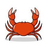 Ilustração vermelha do caranguejo Imagem de Stock Royalty Free