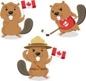 Ilustrações canadenses dos desenhos animados do castor Fotografia de Stock Royalty Free