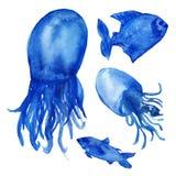 Ilustrações da aquarela, peixes azuis engraçados e medusa com as caudas isoladas no fundo branco imagem de stock
