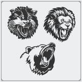 Ilustrações de animais selvagens Urso, leão e lobo Fotografia de Stock