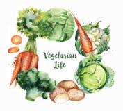 Ilustrações desenhados à mão do alimento da aquarela Foto de Stock