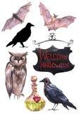 Ilustrações pintados à mão da aquarela Jogo de elementos de Halloween ilustração royalty free