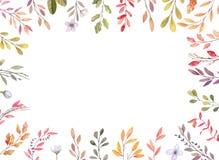 Ilustrações tiradas mão da aquarela Beira de Autumn Botanical SE ilustração do vetor