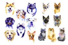 Ilustrações tiradas mão da aquarela do cão e gato ajustadas Imagem de Stock