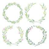 Ilustrações tiradas mão da aquarela Laurel Wreaths Desi floral ilustração royalty free