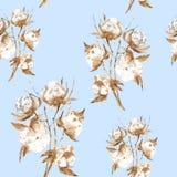 Ilustra??o da aquarela dos ramos do algod?o com flores macias Isolado no fundo azul Teste padr?o sem emenda ilustração do vetor