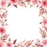 Ilustra??o da aquarela da mola Flor de Sakura Cereja E r ilustração do vetor