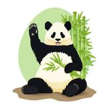 Ilustra??o do vetor dos desenhos animados Panda gigante de sorriso bonito que senta-se guardando o ramo e a ondula??o de bambu ve ilustração royalty free
