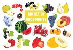 Ilustra??o grande da garatuja do grupo do fruto isolada no fundo branco ?cones do alimento do vetor ilustração stock
