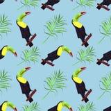 Ilustra??o sem emenda da aquarela do p?ssaro do tucano Folhas tropicais, selva densa Teste padr?o com motivo tropico do ver?o Fol ilustração stock