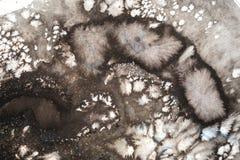 Ilustración abstracta de la acuarela Pintura exhausta del watercolour de la mano Las manchas blancas /negras coloridas texturizar libre illustration