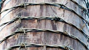 Ilustración abstracta del alambre de púas Imagen de archivo libre de regalías