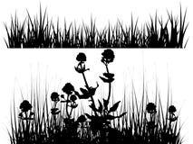 Ilustración aislada del prado Fotografía de archivo