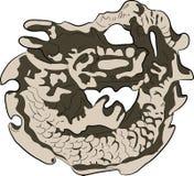 Ilustración asiática del dragón de la tradición Fotografía de archivo libre de regalías