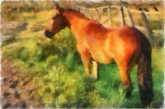 Ilustración, caballo stock de ilustración