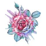 Ilustración color de rosa de la acuarela adornada con los cristales ilustración del vector