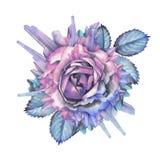 Ilustración color de rosa de la acuarela adornada con los cristales libre illustration