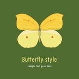 Ilustración con una mariposa Fotos de archivo
