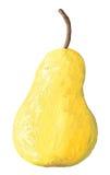 Ilustración de acrílico de la pera Imagen de archivo libre de regalías