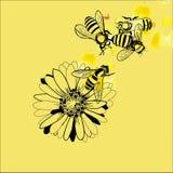 Ilustración de la abeja y de la flor imagen de archivo