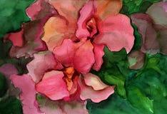Ilustración de la acuarela Flores rojas en hojas verdes Imagenes de archivo