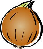 Ilustración de la cebolla Imagen de archivo libre de regalías