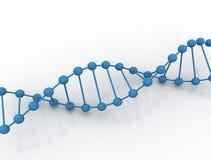 Ilustración de la DNA Ilustración del Vector