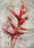 Ilustración de la flor Fotografía de archivo