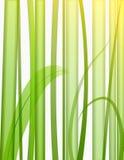 Ilustración de la hierba stock de ilustración