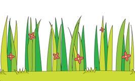 Ilustración de la hierba Fotografía de archivo libre de regalías