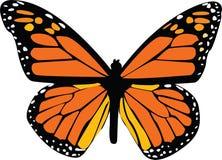 Ilustración de la mariposa Imágenes de archivo libres de regalías